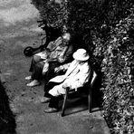 ...Gespräche im Garten...