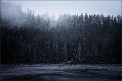 Gestern: Der Glaswaldsee schaurig winterlich