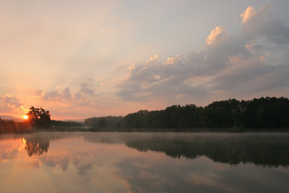 Gestern Morgen am Seehofweiher in Memmelsdorf bei Bamberg