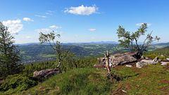 Gestern  Morgen auf dem höchste Gipfel des Elbsandsteingebirges...