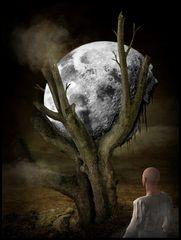 Gestrandeter Mond