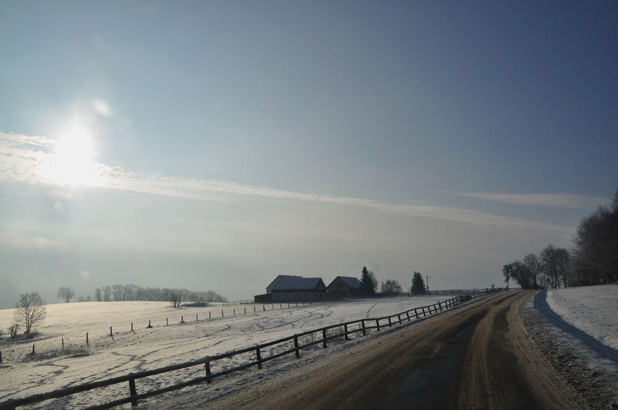 Gestüt im Winter