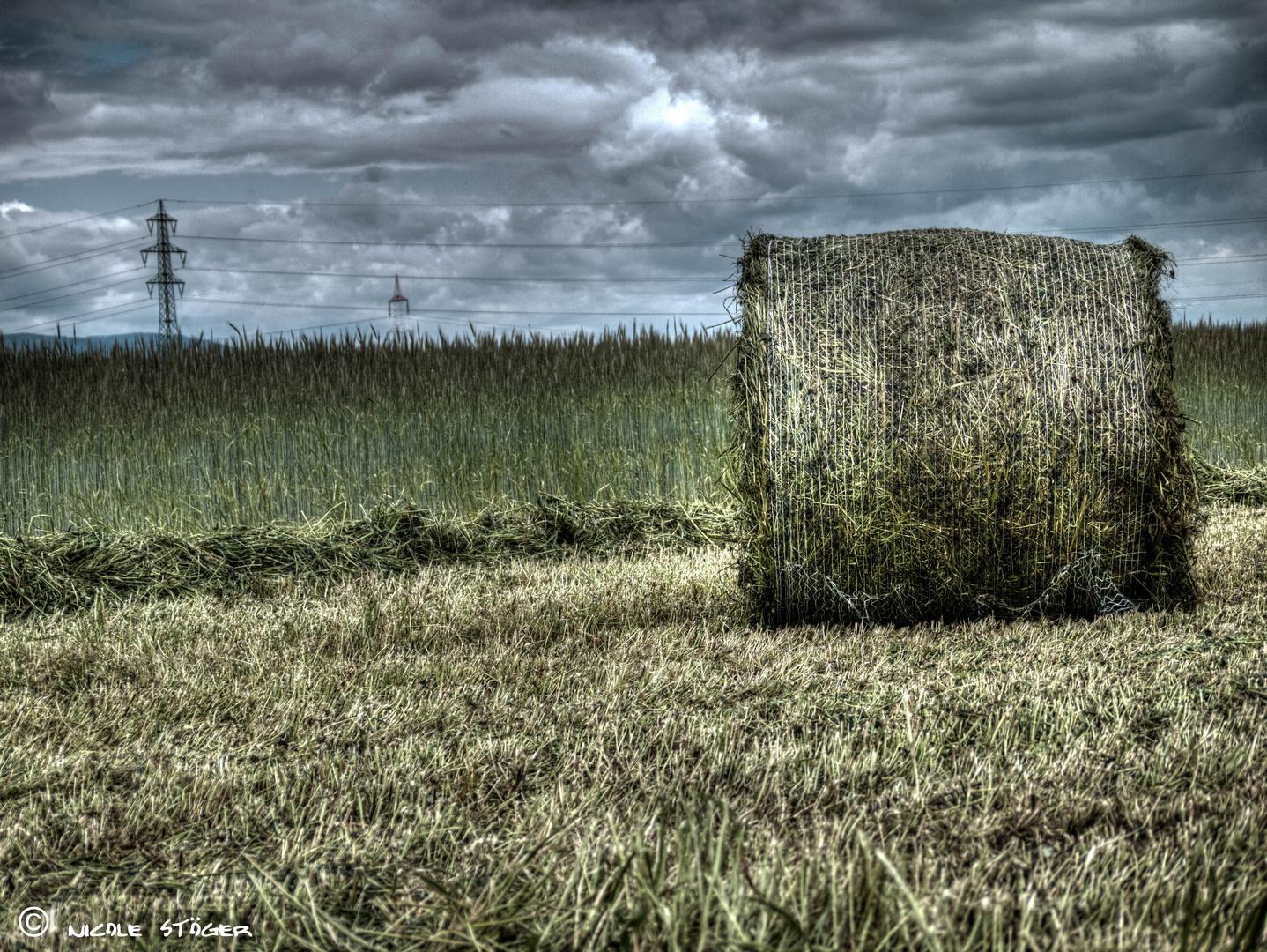 Getreideballen