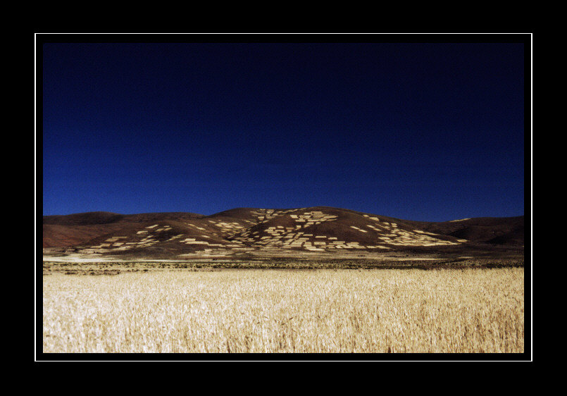 Getreidekammer Boliviens
