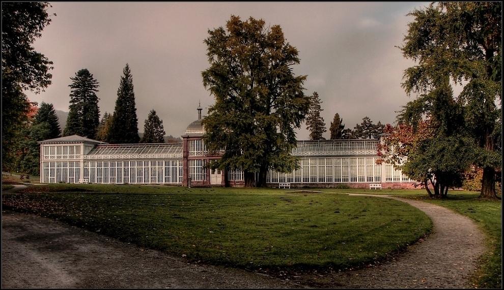 Gewächshaus