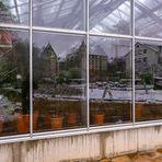 Gewächshausspiegel Botanischer Garten