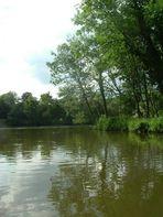 Gewässer rund um Laxenburg