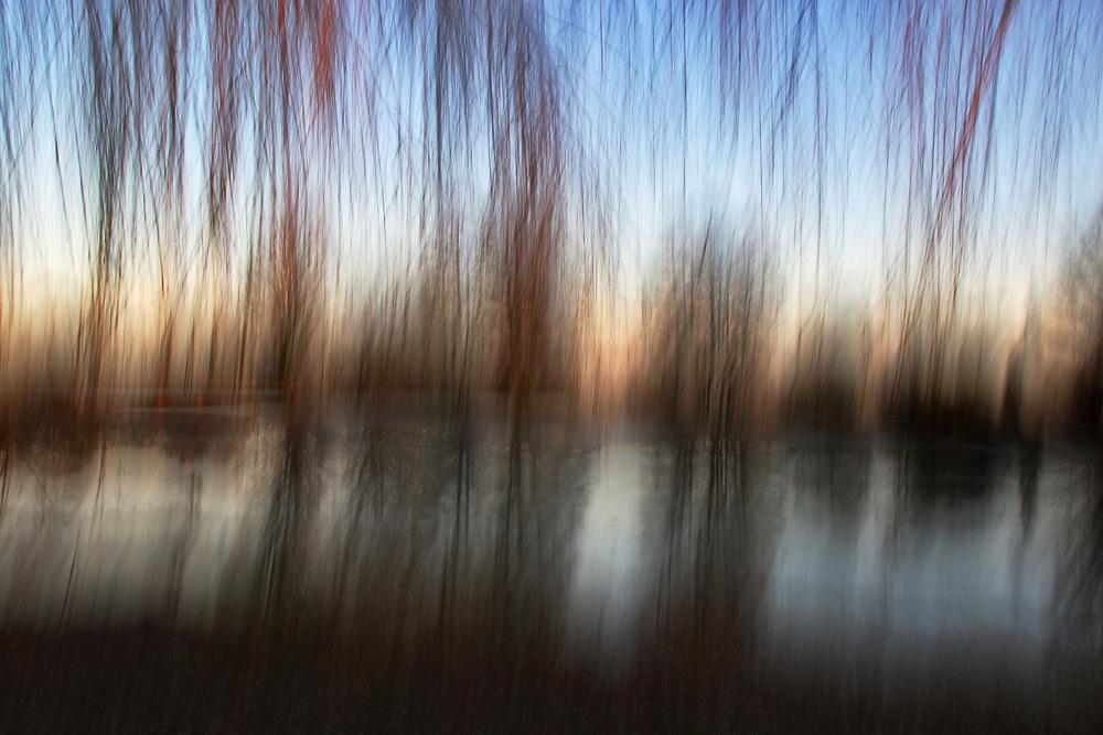 """""""gewischte Bäume"""" am Weiher"""