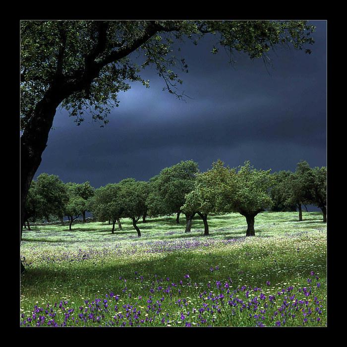 Gewitterstimmung in der Sierra Morena