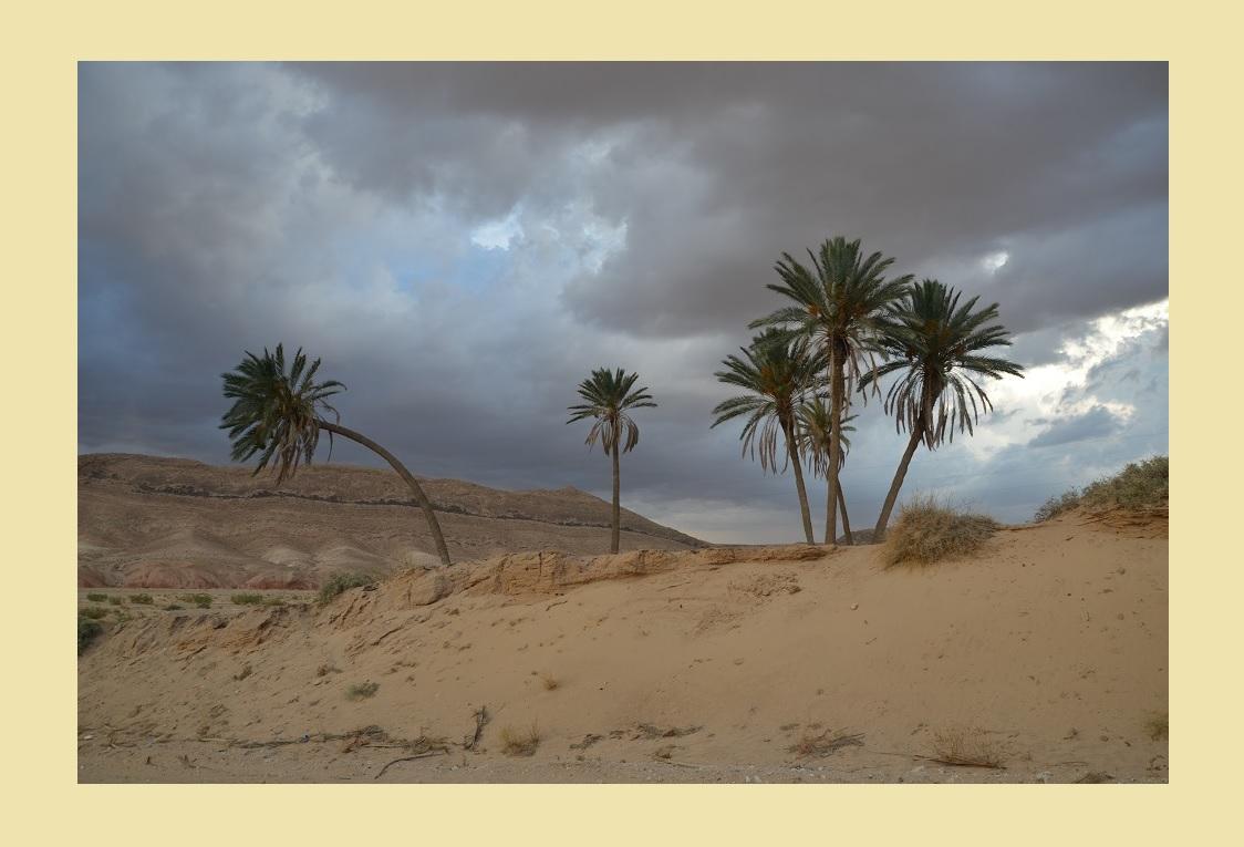 Gewitterstimmung in der tunesischen Wüste