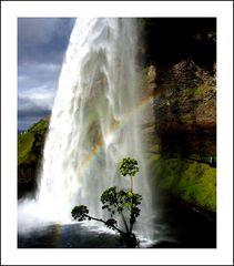 Geyser con arcobleno