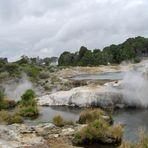 Geysers à Rotorua en Nouvelle-Zélande
