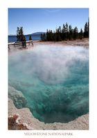 Geysir im Yellowstone Nationalpark, USA