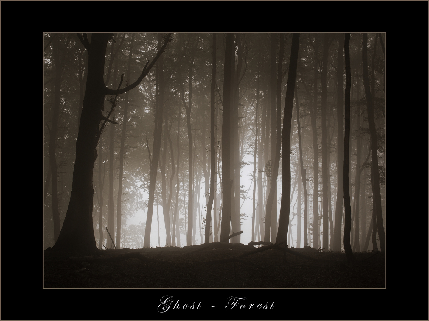 Ghost - Forest