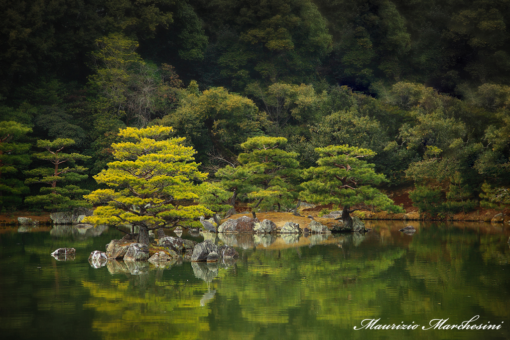 Giardini di Kioto