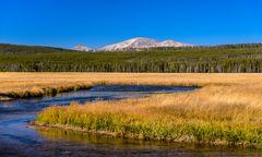 Gibbon River Valley, Yellowstone NP, Wyoming, USA