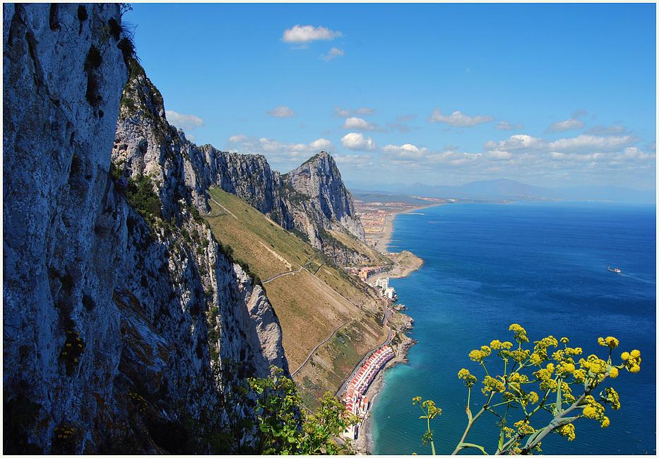 Gibraltar -Upper rock 1
