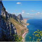 Gibraltar -Upper rock 1