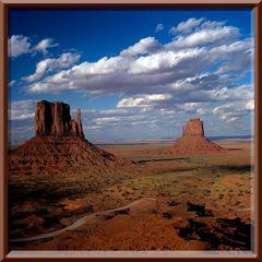 Giganten in der Wüste