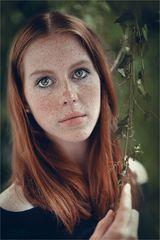 * Ginger @ green *
