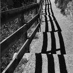 Giochi d'ombra