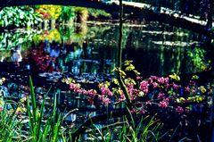 Giverny.        ..120_1226
