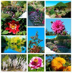 Giverny - der Garten von Monet