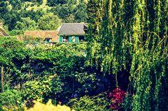 Giverny, Frankreich.         ..120_1235