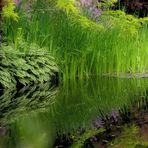 giverny, le jardin de Monet. 2