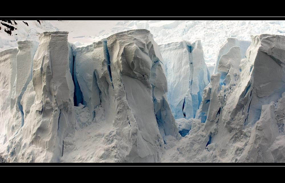 Glacier • Paradise Bay