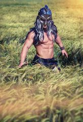 ... gladiator 2 ...