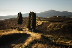 gladiators path