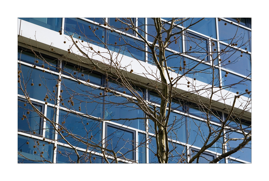 Glasfront bei Siemens in München