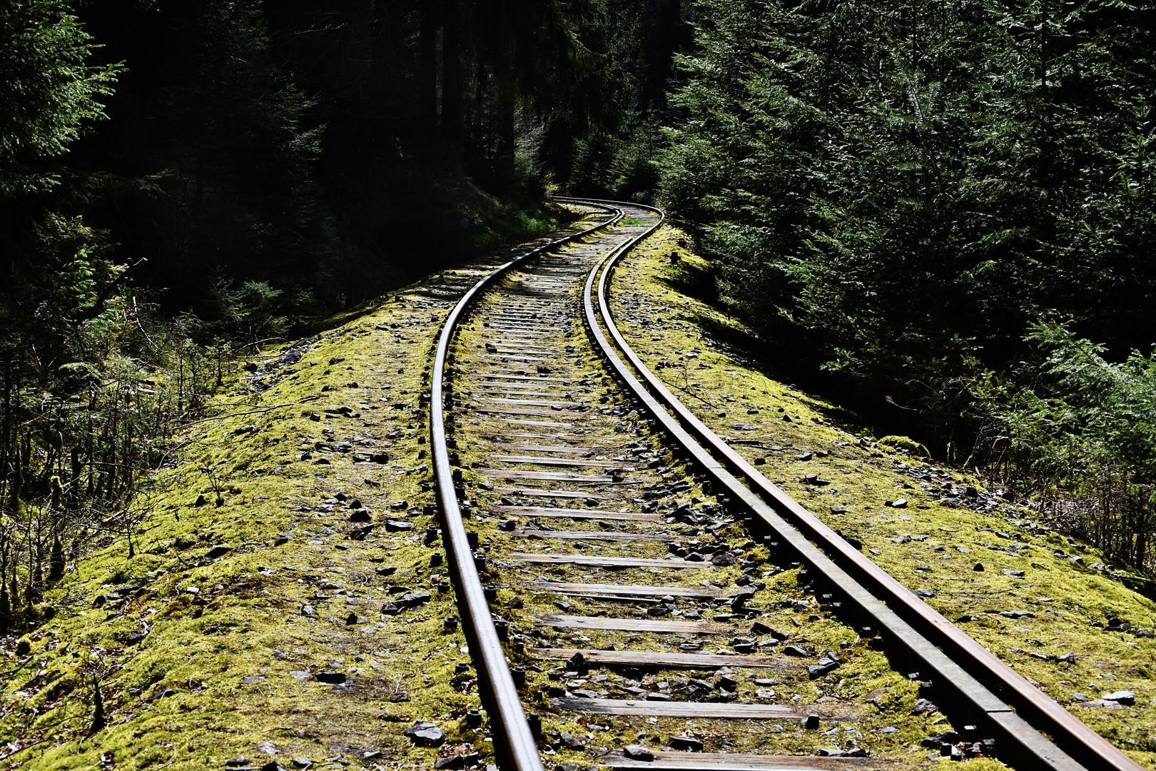 Gleise an der Ziemestalbrücke 02