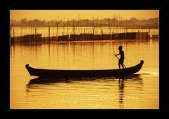 Gleiten durch goldenes Gewässer
