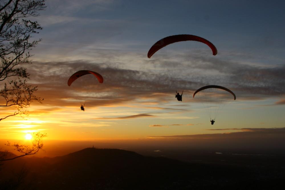 Gleitschirmflieger über Baden-Baden