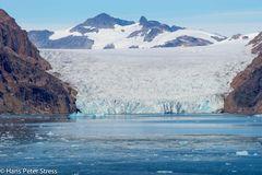 Gletscher im Prinz-Christian-Sund