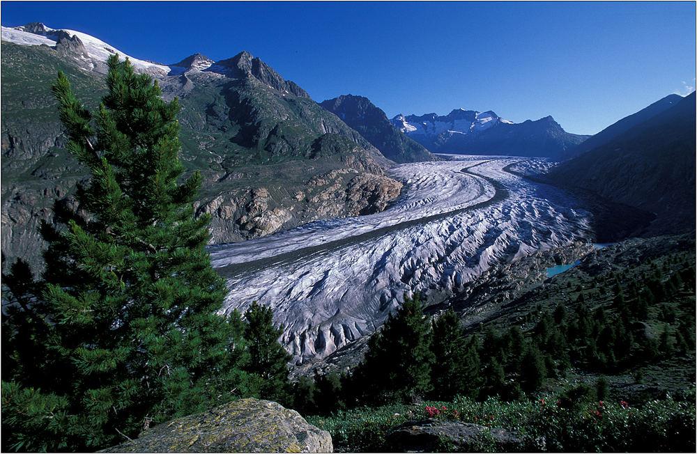 Gletschererwachen III