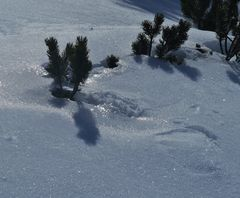Glitzer - Schnee