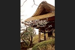 Glockenhütte in Kamakura