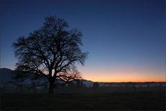 ~ glory sunset III ~
