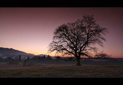 ~ glory sunset IV ~