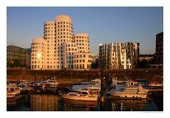 Glowing Gehrys