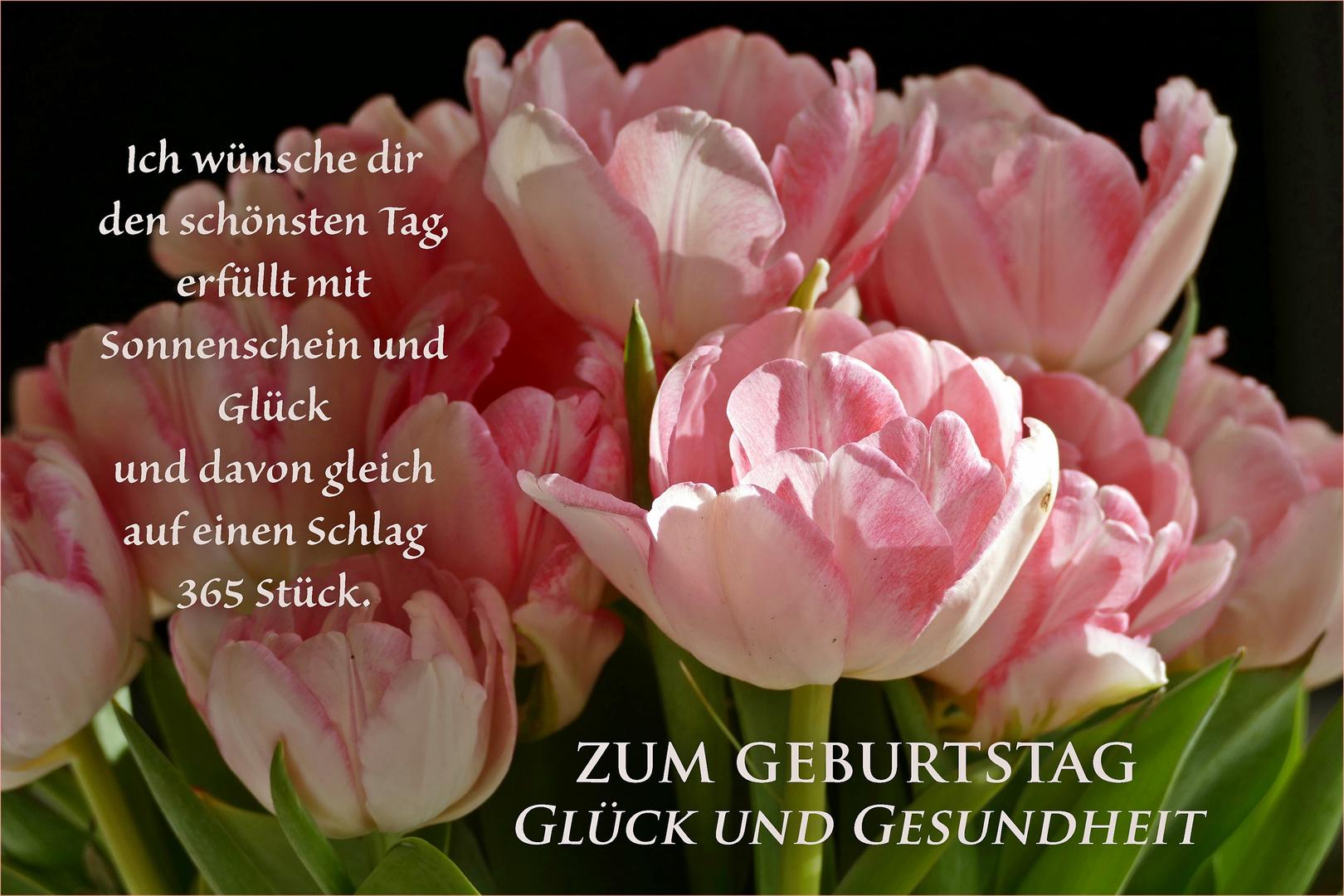 Gluck Und Gesundheit Foto Bild Tulpen Spruch Geburtstag Bilder