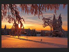 Glühende Schneelandschaft