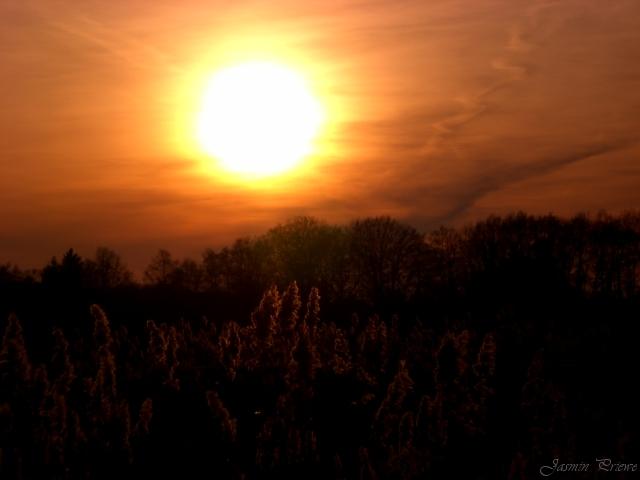 Glühender Sonnenuntergang