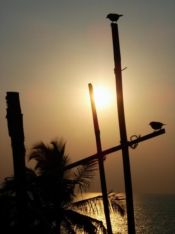 Goa - Sunset