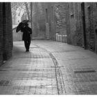 Gocce di....pioggia....in Urbino