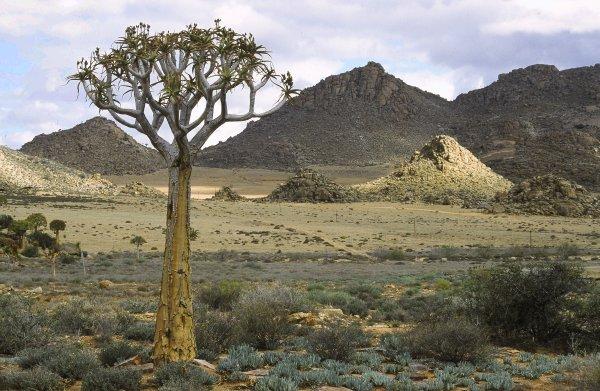 Goegab Nationalpark