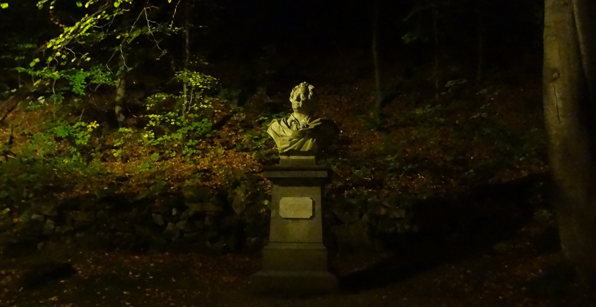 Goethe, Gedicht, vergangen...